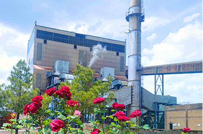 Director Nowrouzi and staff of Zarand power plant visit was held the first working day of the new year.